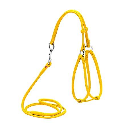 Шлея для кошек и мелких собак Waudog Glamour круглая малая Желтая 34018