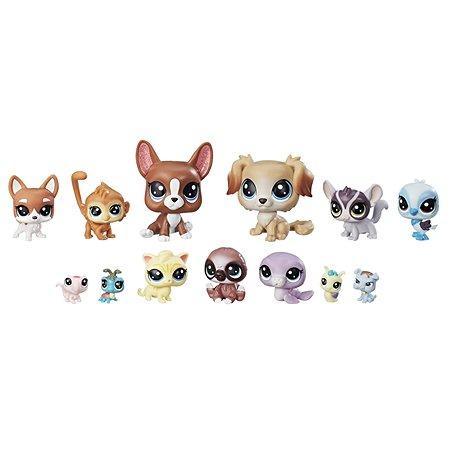 Коллекция озорных петов Littlest Pet Shop Littlest Pet Shop (E1011)