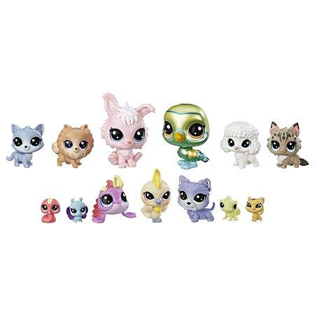 Коллекция петов звёзд Littlest Pet Shop Littlest Pet Shop (E1012)