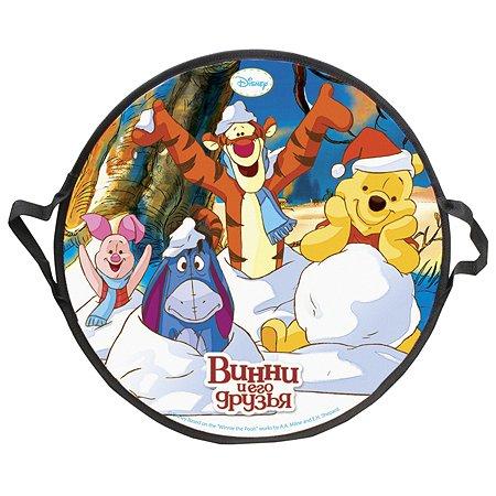 Ледянка 1TOY Disney Винни-Пух круглая Т58164