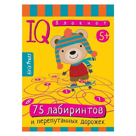 Умный блокнот Айрис ПРЕСС 75 лабиринтов