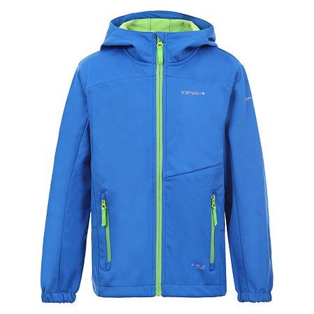 Куртка Icepeak голубая