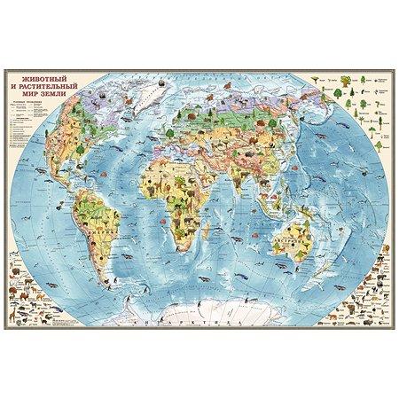 Карта мира Ди Эм Би обитатели Земли настольная двухсторонняя капсулированная