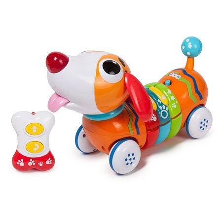 Радужный щенок Baby Go свет звук