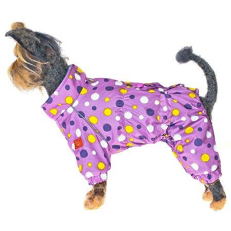 Комбинезон для собак Happy Puppy Конфетти 4 Сиреневый
