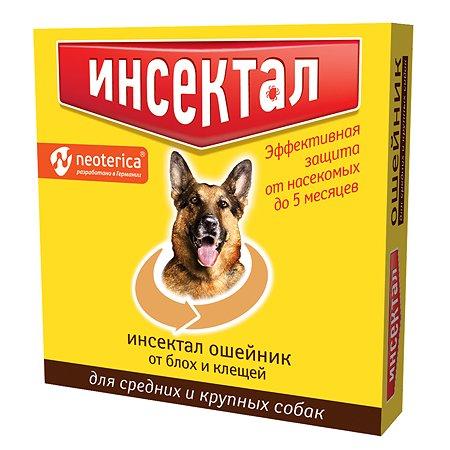 Ошейник для собак Инсектал средних и крупных пород от блох и клещей 75см Золотой