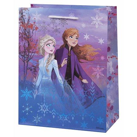 Пакет подарочный Феникс Презент Дисней Холодное сердце 18*23*10см 140г/м2 81150