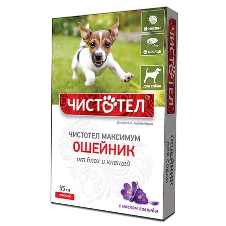 Ошейник для собак Чистотел Максимум от блох и клещей 65см Красный