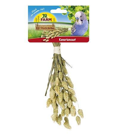 Лакомство для птиц JR Farm ветка канареечного семени 20г
