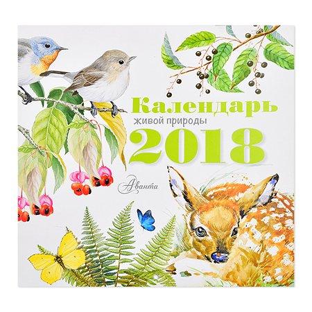 Календарь АСТ Календарь живой природы