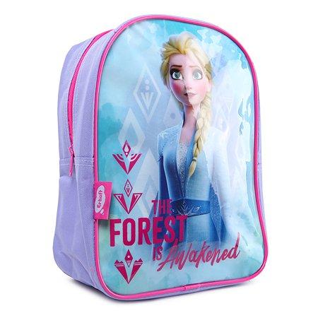 Рюкзак дошкольный Erhaft Disney Frozen FRZ-00001