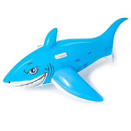 Игрушка надувная Bestway для катания верхом Акула 41032