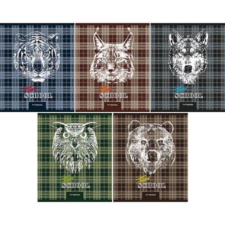 Тетрадь Феникс + Животные на шотландке 96 л в ассортименте