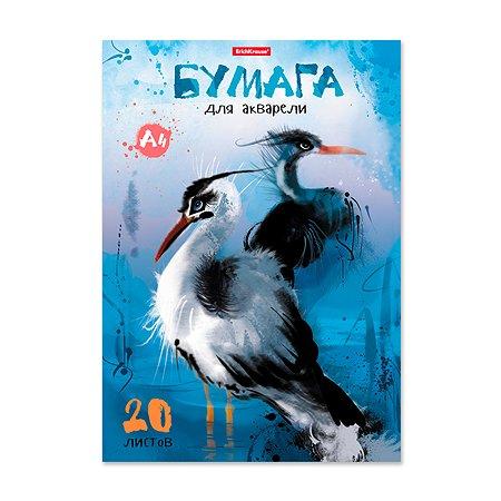 Альбом Erich Krause для рисования с акварельной бумагой Птицы жарких стран А4 20 л
