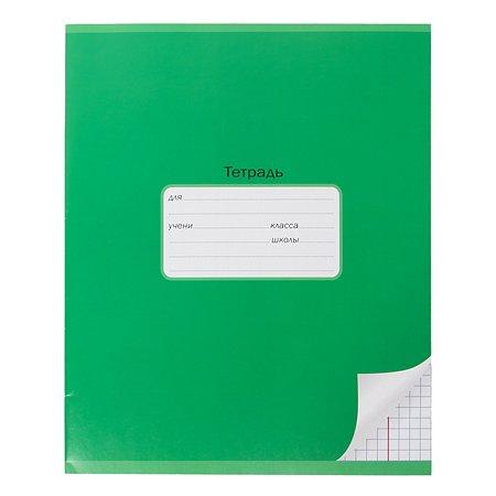 Тетрадь школьная Мировые тетради А5 Клетка 12л Зеленый ТШ12K640