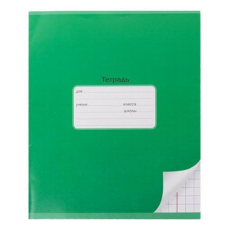 Тетрадь школьная Мировые тетради А5 Крупная клетка 12л Зеленый ТШ12K4640