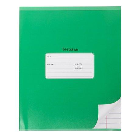 Тетрадь школьная Мировые тетради А5 Линия 12л Зеленый ТШ12K6640