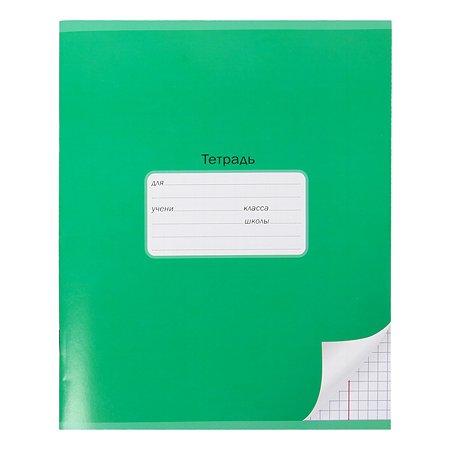 Тетрадь школьная Мировые тетради А5 Клетка 24л Зеленый ТШ24K640