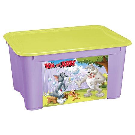 Ящик Пластишка Tom and Jerry L универсальный с аппликацией Сиреневый