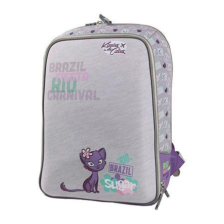 Рюкзак школьный Proff (серый)