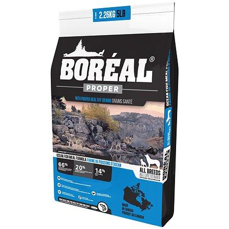 Корм для собак Boreal Proper с океанической рыбой 2.26кг