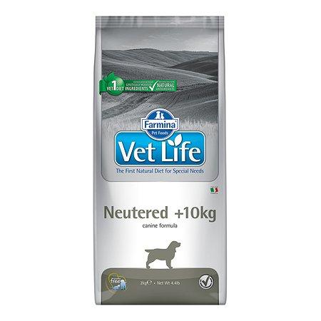 Корм для собак Farmina VetLife для стерилизованных собак вес более 10кг 2кг