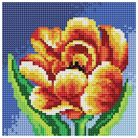 Набор Белоснежка Махровый тюльпан