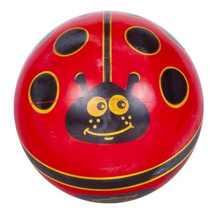 Мяч DEMA-STIL Божья коровка DS-PP 009