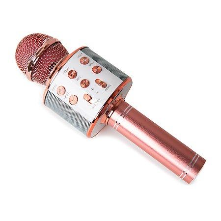 Микрофон-караоке Fengchengjia toys YS0213716