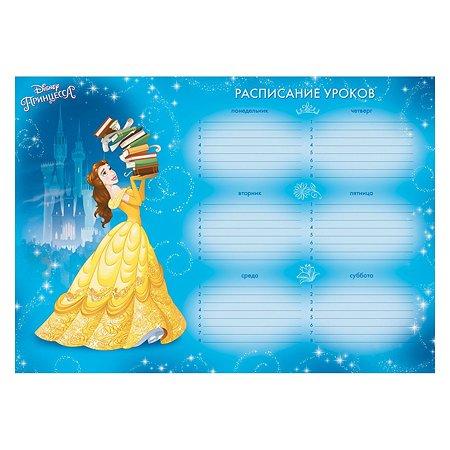 Расписание уроков ErichKrause Принцессы Disney Большая мечта A4