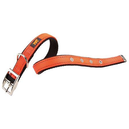 Ошейник для собак Ferplast Dual CF20/43 Colours Оранжевый