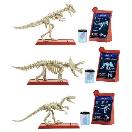 Набор археологический Jurassic World Фигурки скелеты в ассортименте