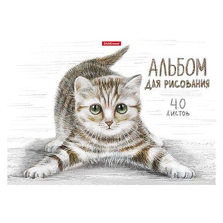 Альбом для рисования ErichKrause Tabby А4 40л 49844