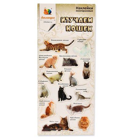 Наклейка декоративная леденцовая Липляндия Кошки
