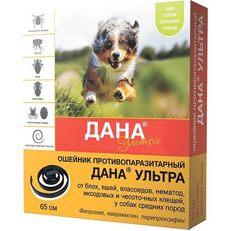 Ошейник инсектоакарицидный для собак Apicenna Дана Ультра средних пород 21247