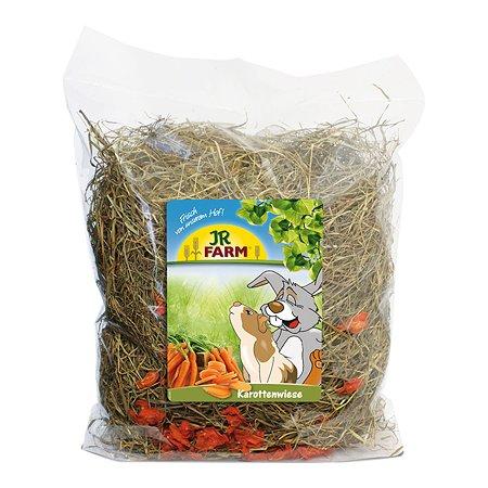 Сено для грызунов JR Farm с добавлением моркови 500г