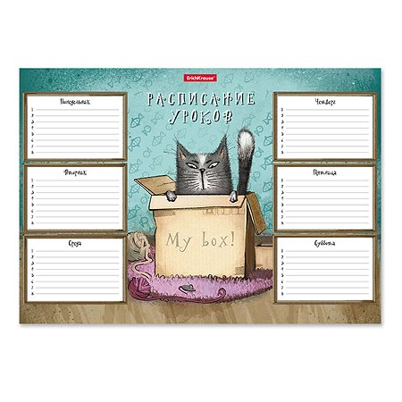 Расписание уроков ErichKrause Cat and Box А4 49707
