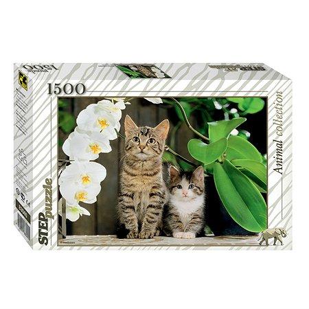 Пазл Step Puzzle Котята и орхидея 1500элементов 83040
