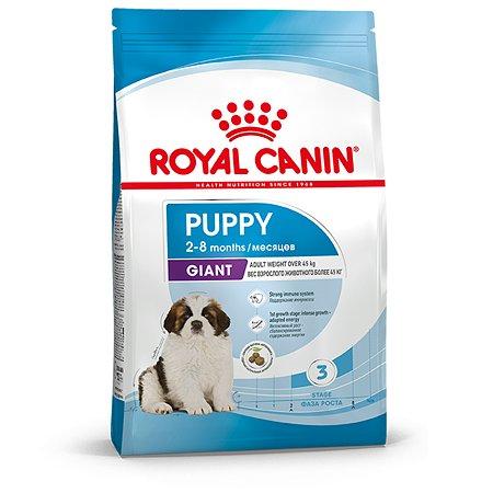 Корм для щенков ROYAL CANIN гигантских пород 2-8месяцев 3.5кг