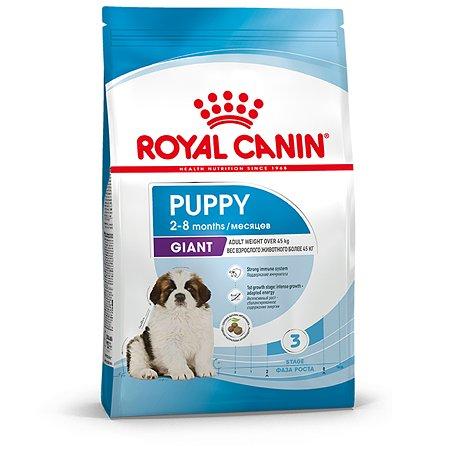 Корм для щенков ROYAL CANIN гигантских пород 2-8месяцев 15кг