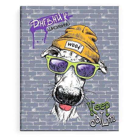 Дневник школьный Феникс + Стрит арт 49425