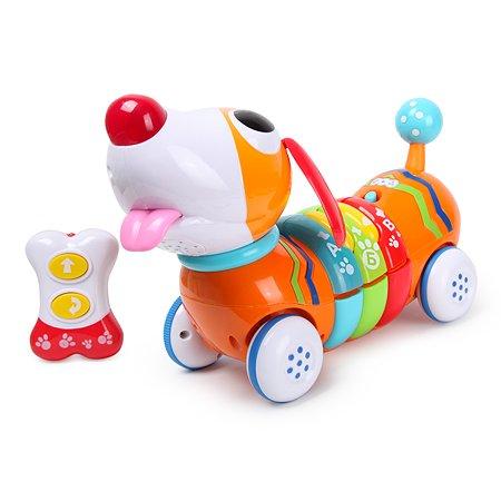 Игрушка Baby Go Радужный щенок 1142-NL
