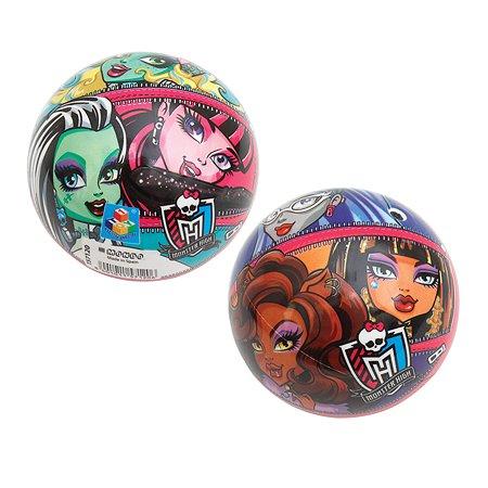 Мяч 1TOY Monster High 14 см в ассортименте