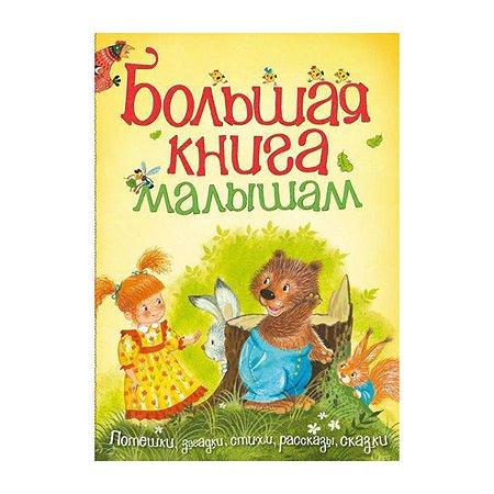 Большая книга малышам. Махаон Пляцковский М.