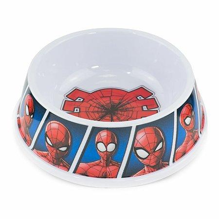 Миска Buckle-Down Человек-паук Мультиколор