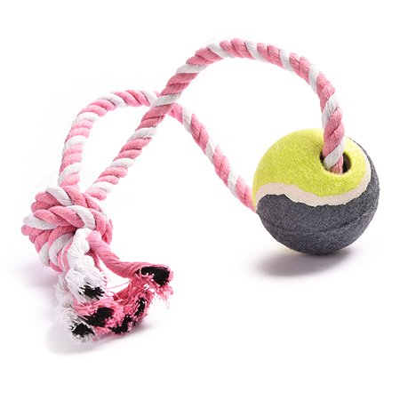 Игрушка для собак FAUNA Мяч на веревке на подвесе FIRT-0004