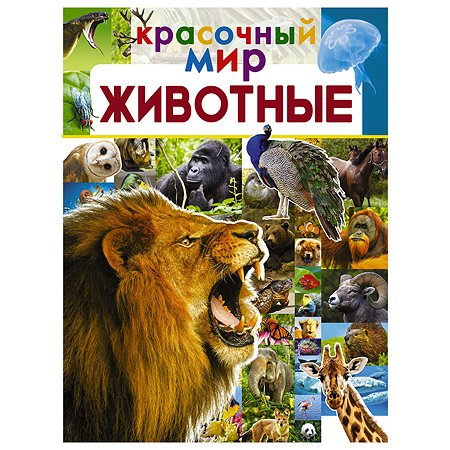 Книга АСТ Красочный Мир Животные
