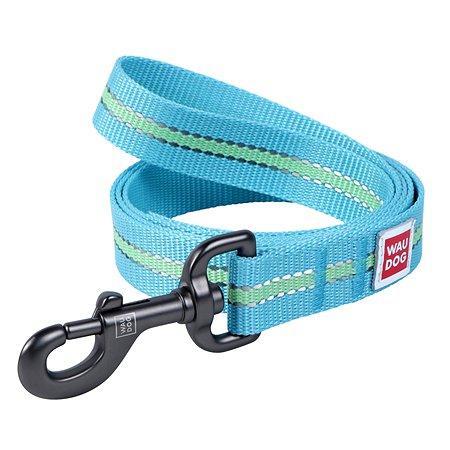 Поводок для собак Waudog Nylon светящийся малый Синий