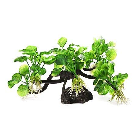 Декорация для аквариума FAUNA Растение на коряге-35 FIAD-1281