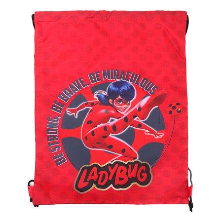 Мешок для обуви Erhaft Lady Bug LAB-041